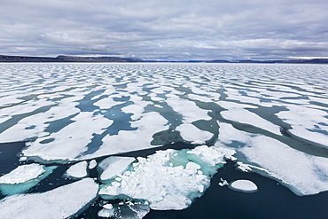 Shorefast ice starting to melt in Maxwell Bay, Devon Island, Nunavut, Canada, North America