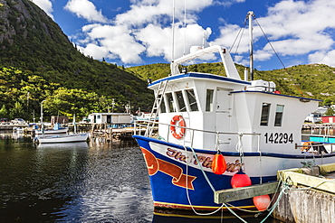 Small harbour with fishing boats outside St. John's, Newfoundland, Canada, North America
