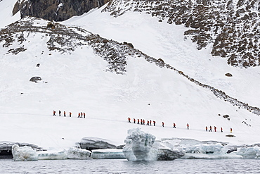 Lindblad Expeditions guests from the National Geographic Explorer at Brown Bluff, Weddell Sea, Antarctica, Polar Regions