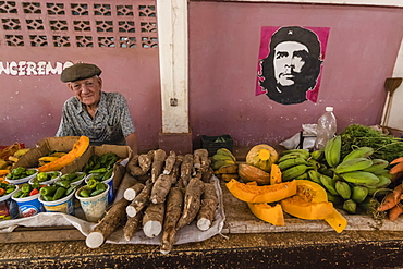 Fruit and vegetables for sale by private vendor at the Mercado Industrial in Cienfuegos, Cuba, West Indies, Caribbean, Central America
