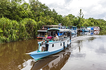 Klotok with tourists on the Sekonyer River, Tanjung Puting National Park, Kalimantan, Borneo, Indonesia, Southeast Asia, Asia