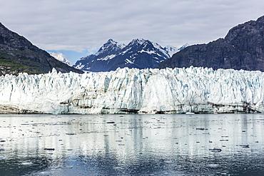 Lamplugh Glacier in Glacier Bay National Park, southeast Alaska, United States of America, North America