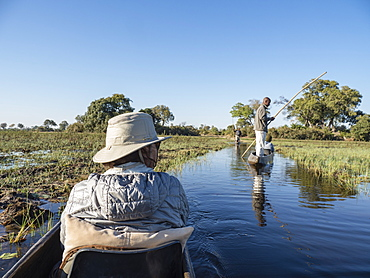 Tourists being poled through the shallow water by Mokoro in the Okavango Delta, Botswana, Africa