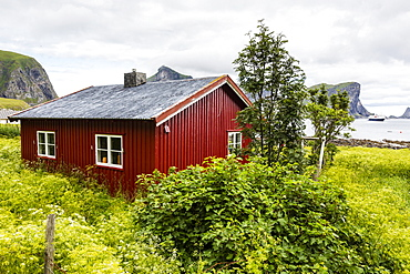 Norwegian summer homes in the town of Vaeroya, Nordland, Norway, Scandinavia, Europe
