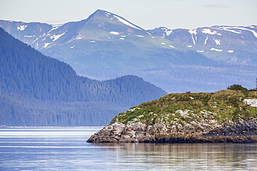 Northern (Steller) sea lions (Eumetopias jubatus), South Marble Island, Glacier Bay National Park, Southeastern Alaska, United States of America, North America