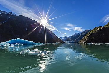 Calved glacier ice in Tracy Arm-Ford's Terror Wilderness area, Southeast Alaska, United States of America, North America