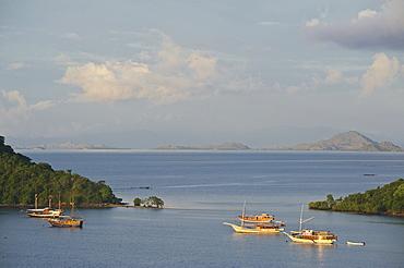 Early morning view above the harbour towards Komodo National Park, Labuhanbajo, West Flores, Nusa Tenggara, Lesser Sunda Islands, Indonesia, Southeast Asia, Asia