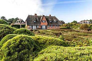 Thatched-roof house, Kampen, Sylt, Schleswig-Holstein, Germany