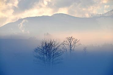 Zahmer Kaiser aurrounded by mist, Kaiserwinkl, Winter in Tyrol, Austria
