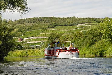 Steamer on the Unstrut river, vineyards in background, Naumburg, Saxony-Anhalt, Germany