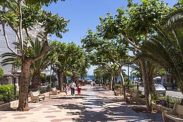 Promenade in Finca, Santa Eularia des Riu, Ibiza, Balearic Islands, Spain