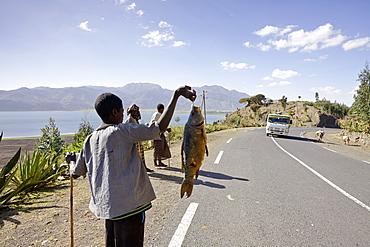 Boy selling fish at Ashange Hayk, near Maychew, Tigray region, Ethiopia