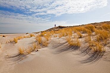 List lighthouse behind dunes, North sea, List, Sylt, Schleswig-Holstein, Germany