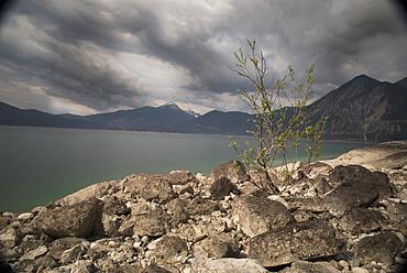 Rocky shore at low tide at lake Walchensee, Lake Walchensee, Alps, Upper Bavaria, Bavaria, Germany