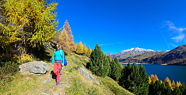 Woman hiking above Lake Sils with the village of Isola and Piz Corvatsch (3451 m) on the opposite shore, Engadin, Grisons, Swit