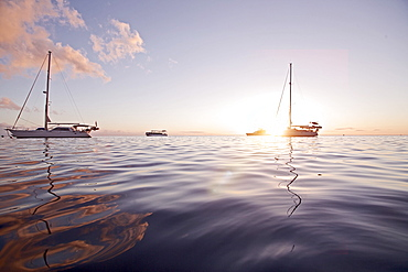 Sailboats in backlight, Dominica, Lesser Antilles, Caribbean