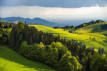 Schauinsland, near Freiburg im Breisgau, Black Forest, Baden-Wuerttemberg, Germany