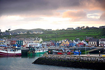 Dingle harbour in the evening, Dingle peninsula, Kerry, West coast, Ireland