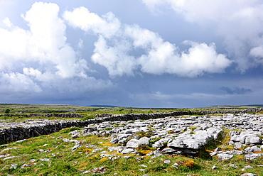 In the Burren, Clare, West coast, Ireland