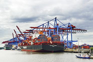 Container ships at container terminal Burchardkai, Waltershof, Hamburg, Germany