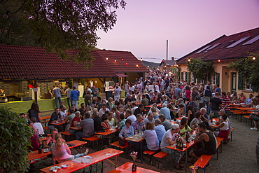 People sitting outside Dahms winery during a Weinfest an der Peterstirn, Schweinfurt, Franconia, Bavaria, Germany