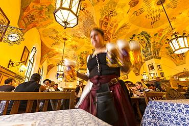 Waitress carrying beer in Hofbraeuhaus, Munich, Upper Bavaria, Bavaria, Germany