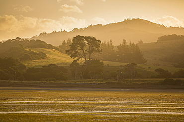 Late afternoon and low tide at Puponga, Farewell Spit, Golden Bay, South Island, New Zealand