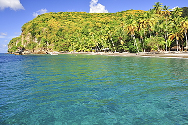Palm trees and boats at Anse Mamin beach and cliffs, Anse Chastanet, Soufriere, sea, St. Lucia, Saint Lucia, Lesser Antilles, West Indies, Windward Islands, Antilles, Caribbean, Central America