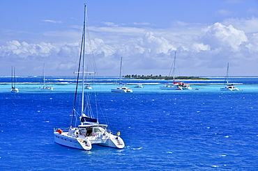 sailing ships on the sea and Baradel island, Horseshoe Reef, Tobago Cays, St. Vincent, Saint Vincent and the Grenadines, Lesser Antilles, West Indies, Windward Islands, Antilles, Caribbean, Central America