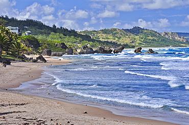 Beach with rocks and waves, sea, Bathsheeba, East Coast, Barbados, Lesser Antilles, West Indies, Windward Islands, Antilles, Caribbean, Central America
