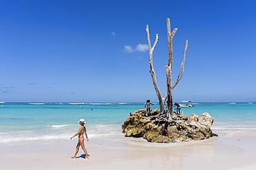 Palm beach, Playa Bavaro, Punta Cana, Samana, Dominican Republic, Antilles, Caribbean
