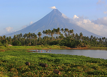 People bathing in a lake, Mayon volcano in the background, Legazpi, Philippines, Asia