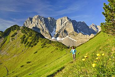 Woman hiking along trail, Lamsenspitze, Schafkarspitze and Hochglueck in background, Karwendel, Tyrol, Austria