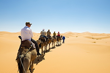 group of tourists riding dromedaries in the sand dunes, Erg Chebbi, Sahara Desert, Morocco, Africa