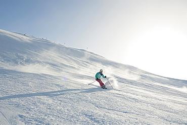 skier, Warth-Schroecken ski area, Bregenz district, Vorarlberg, Austria