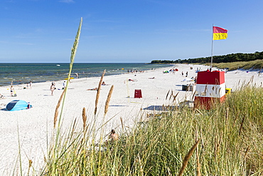 Balka Beach, popular bay with sandy beach, summer, Baltic sea, Bornholm, near Snogebaek, Denmark, Europe