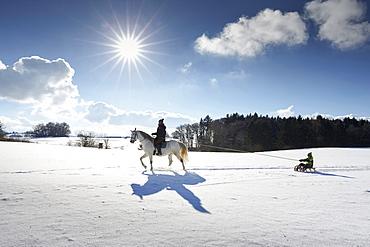 Mother on horse pulling children on sledge, Buchensee, Muensing, Bavaria Germany