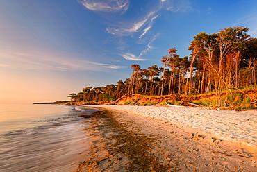 Summer, Beach, West Beach, Sunset, Baltic Sea, Mecklenburg, Germany, Europe
