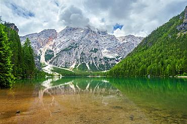 Reflection, Lago Di Braies, Lago Di Braies, Seekofel, Dolomites, Alps, Italy, Europe
