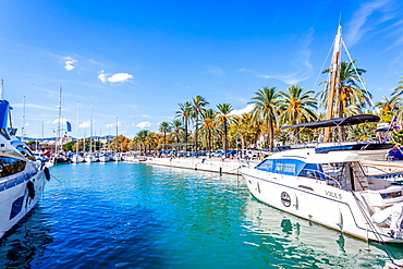 Luxury yachts at the port of Mallorca. Puerto de Palma, Port of Palma, Palma, Mallorca, Spain, Europe