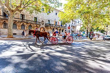 Horse carriage in the old town of Palma, historic city centre, Ciutat Antiga, Palma de Mallorca, Majorca, Balearic Islands, Mediterranean Sea, Spain, Europe