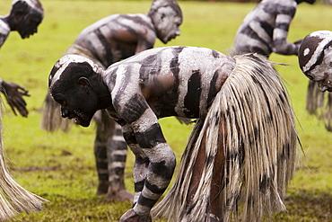 Snakemen Warakala at Singsing Dance, Lae, Papue New Guinea, Oceania