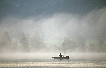Fisher in a boat on Kochelsee lake in morning mist, Bavaria, Germany