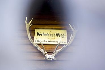 Forbidden sign between antler at wooden wall, Hollengebirge, Upper Austria, Austria