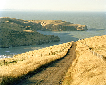 Deserted country road on shore in the sunlight, Okains Bay, Banks Peninsula, South Island, New Zealand