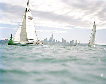 Sailing boats under clouded skin front of Waitemata Harbour, Auckland, North Island, New Zealand