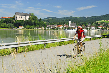Female cyclist riding along Danube river, Danube Cycle Route Passau to Vienna, Grein, Upper Austria, Austria