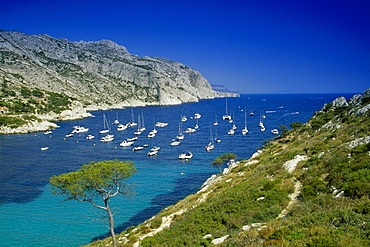 Boats anchoring in a bay under blue sky, Calanque de Sormiou, Cote d´Azur, Provence, France, Europe