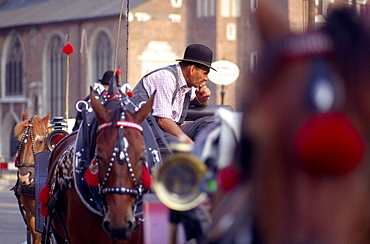 Carriages on Market Square in Cracow, Poland