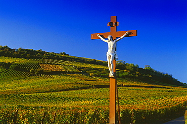 Cross in the Vineyard at Sigolsheim,Elsass,France